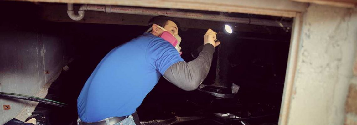 Check The Crawl Space - Mildew Removal Springfield MO