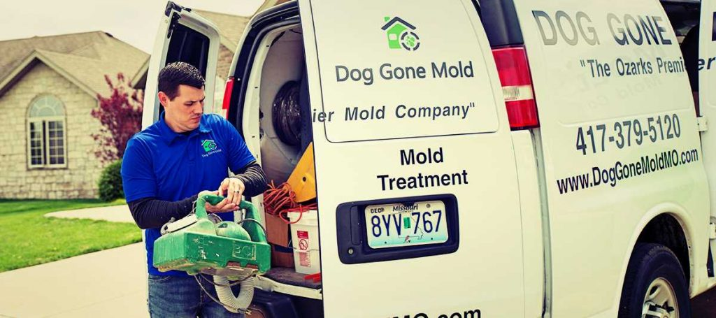 The Difference Between Mold vs Mildew Removal in Springfield Missouri