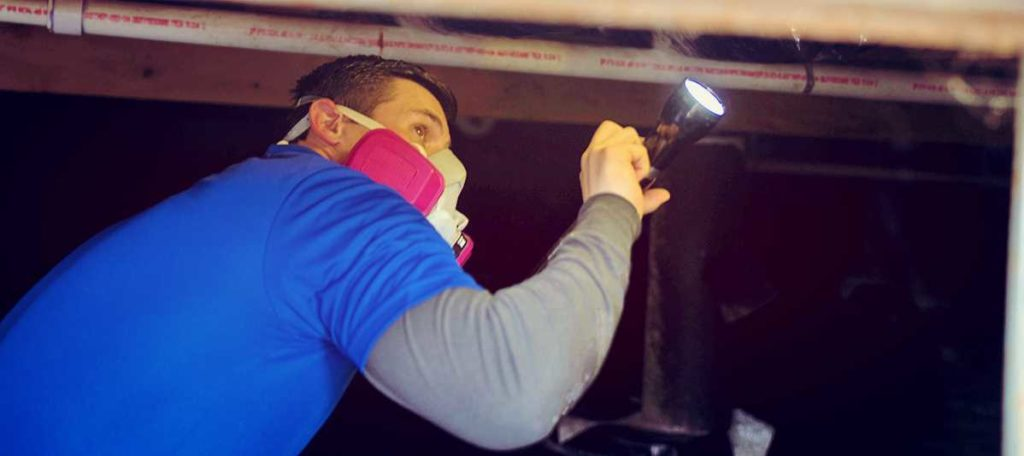 Protect Your Family's Health With Mold Mitigation in Springfield Missouri
