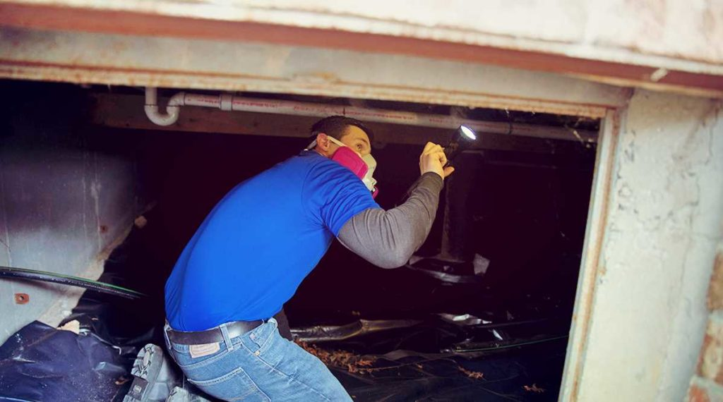 Inspect Sill Plates To Prevent Crawl Space Mold in Springfield Missouri