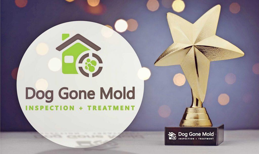 Hire An Award Winning Mold Company in Springfield Missouri